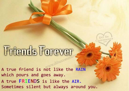 friends forever scraps friends forever greetings friends forever